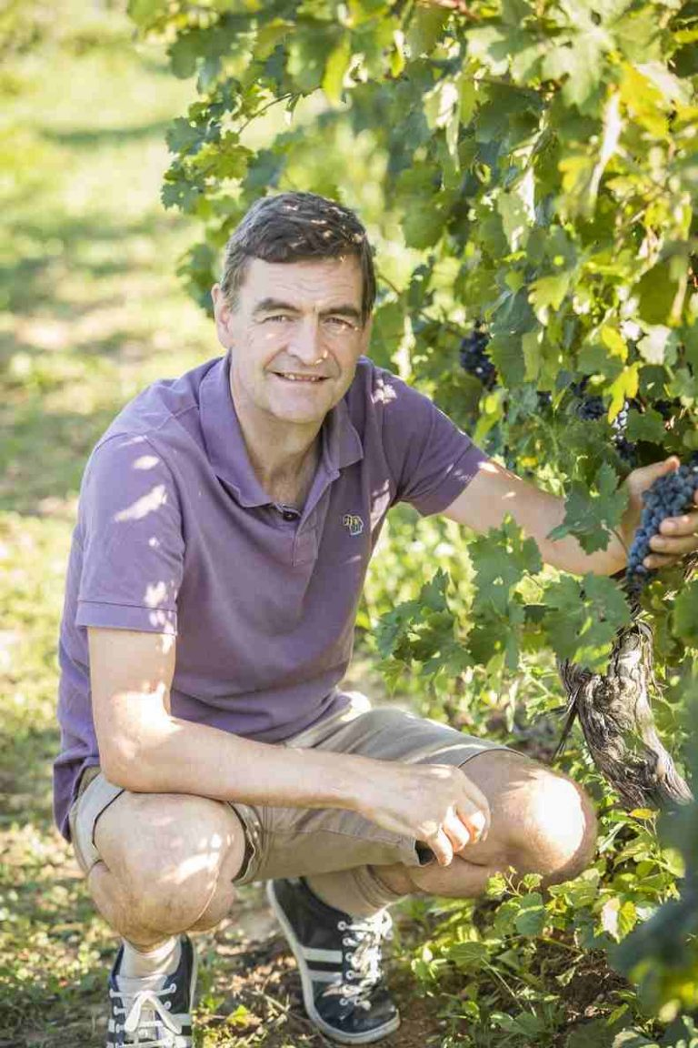 Nick tending the grapes at Domaine Saint Hilaire